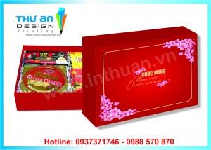 Túi Hộp đựng quà tết bán sẵn chất lượng cao