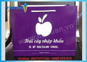 Địa chỉ bán túi giấy đựng hoa quả có sẵn Nguyễn Chí Thanh